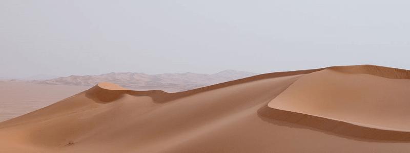 czy google plus to pustynia?