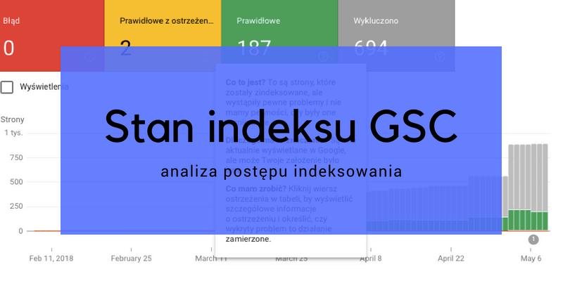Stan indeksu GSC – analiza postępu indeksowania serwisu internetowego